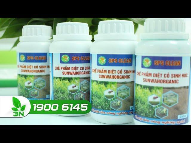 Chế phẩm trừ cỏ sinh học: Độc với cỏ - Lành với người?